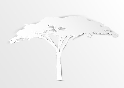 Acacia tree in paper cut art style or digital craft vector illustration white color. African tree icon, acacia tree silhouette, vector isolated on white