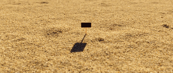 Close Up of Wooden Sign Stuck into Particles of Sand on a Sunny with Depth of Field Day 3d illustration