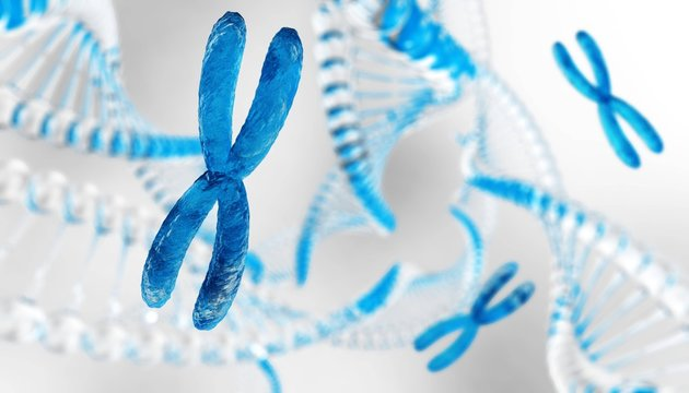 X chromosome against the background of DNA. Chromosomes and DNA.