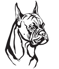 Decorative portrait of Dog Boxer vector illustration