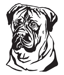 Decorative portrait of Dog Bullmastiff vector illustration