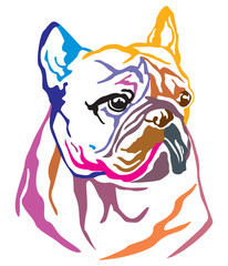 Colorful decorative portrait of Dog French Bulldog vector illustration