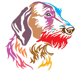 Colorful decorative portrait of Dog German Wirehaired Pointer vector illustration