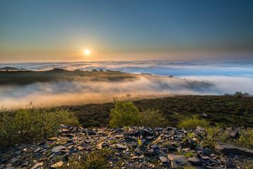 sun, fog and horses on the mountain!