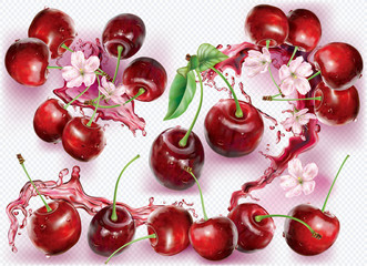 Wall Mural - Cherry and flower into of splashes of juices