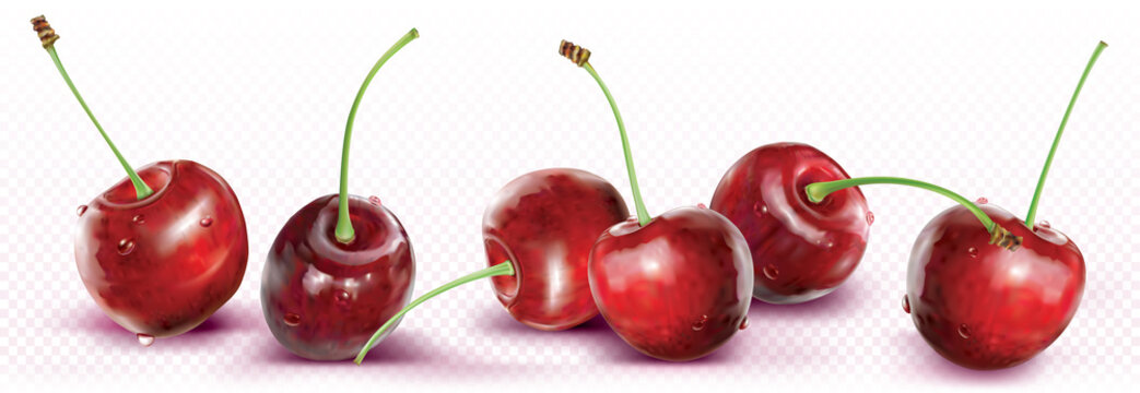 Cherries are placed in a line