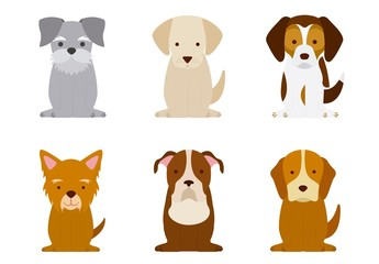 9 Colorful Dog Icons