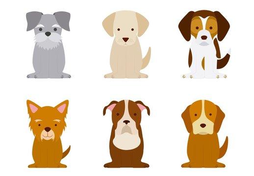 9 Colorful Dog Icons