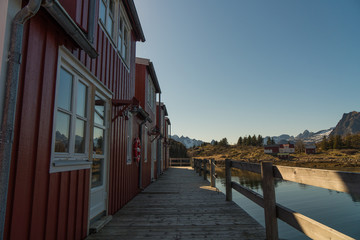 Typical norwegian houses at Svolvaer at Lofoten Islands / Norway