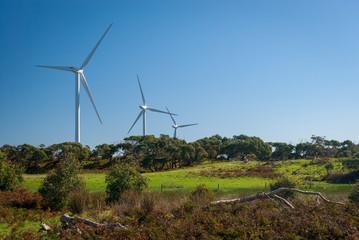 Wind turbines on the coast of Victoria Australia