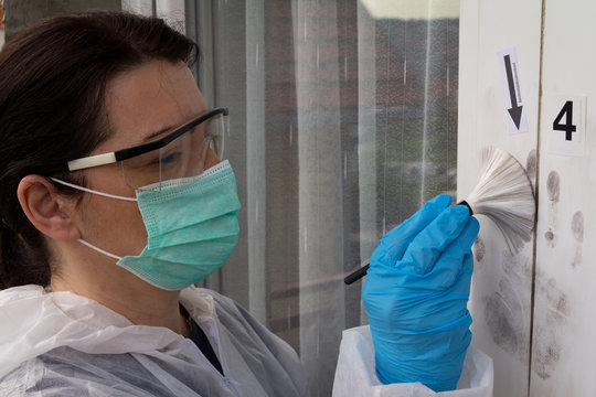 Forensic experts finds fingerprints on the window with magnetic brush and black magnetic powder. Female forensic expert