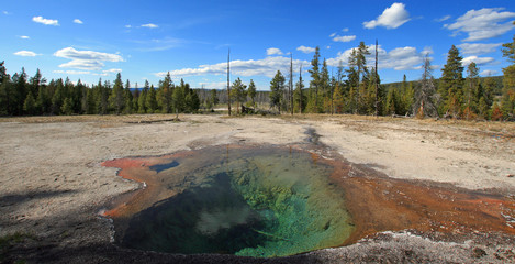Steam rising off Lemon Spring in Yellowstone National Park in Wyoming USA