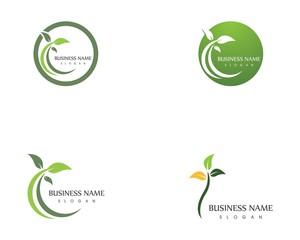Nature leaf icon logo design template