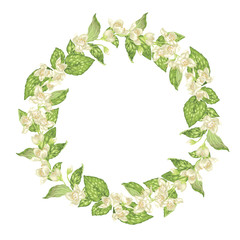 Circle  wreath with jasmine flowers in graphic vector realistic illustration with a lot of tiny flowers