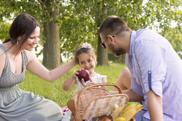 family with a child on a picnic