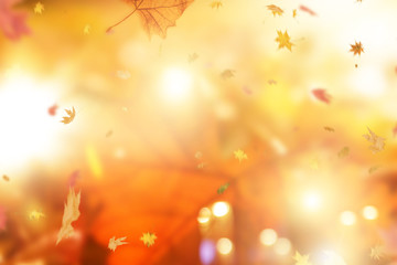 Herbstlicher Hintergrund Bokeh
