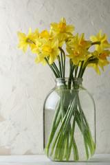 Photo sur Plexiglas Narcisse Yellow narcissus flowers
