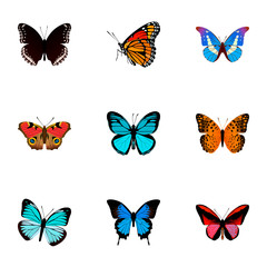 Set of moth realistic symbols with painted lady, agrias claudina, monarch and other icons for your web mobile app logo design.