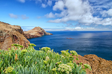 Sunny Madeira coastline background