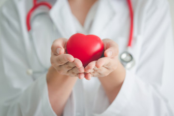 Holding red heart shape in hand