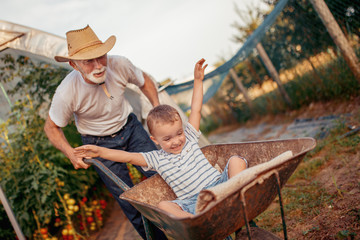 Happy grandfather and his grandson playing with a wheelbarrow