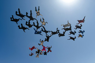Skydiving group formation low angle view