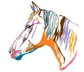 Colorful decorative portrait of horse-2 vector illustration