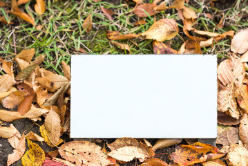 Metal white plate on green grass, Hakone, Japan. Frame for text.