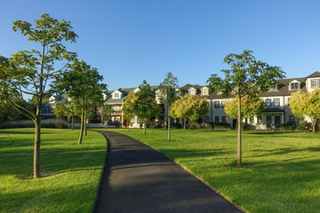 Footpath lined with trees in a park with residential townhouses in distance. Kensington, VIC Australia. - fototapety na wymiar
