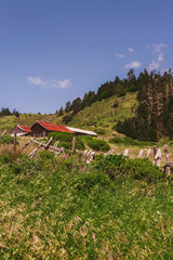 rural scenes in north California
