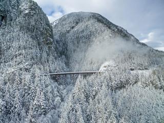 Winter Train Trestle