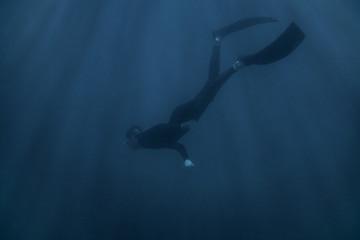 Foto auf AluDibond Tauchen Man freediver wearing in wetsuit swimming underwater.