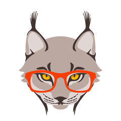 lynx  in the glasses vector illustration flat style front