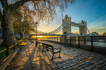 Garden Poster London Tower Bridge at sunrise in autumn