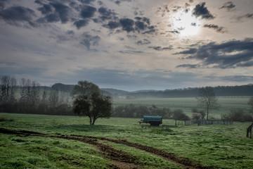 Champ brumeux sur fond d'un paysage d'une forêt en Moselle, à la lueur du matin, avec la brume matinale près de Metz