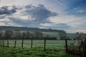 Clôture donnant sur une prairie un beau matin en Moselle près de Metz