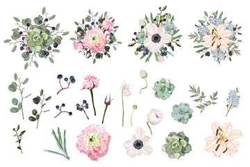 Pink eustoma, anemones, lilies, succulents, eucalyptus and berries campanula flowers and mix of seasonal plants and herbs big vector collection. All elements are isolated and editable.