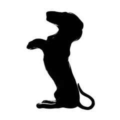 Dachshund badger dog breed, isolated pedigree silhouette, vertical illustration, large detailed black macro closeup, kennel club concept
