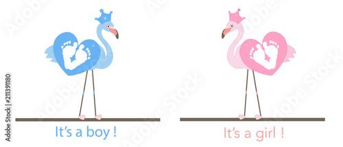 Flamingos baby foot prints baby gender reveal baby girl baby boy baby foot prints baby gender reveal baby girl baby boy m4hsunfo