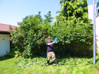 Man cutting hedge with electric hedgecutter