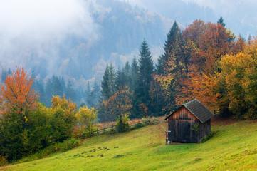 Autumn landscape with a wooden hut