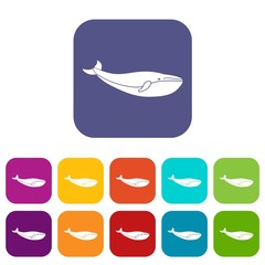 Whale icons set vector illustration in flat style in colors red, blue, green, and other