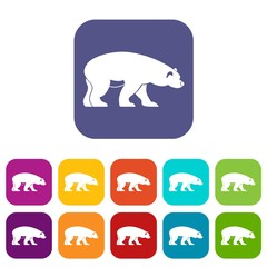 Bear icons set vector illustration in flat style in colors red, blue, green, and other