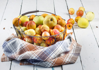 Ripe tasty fresh apricots and apples in  woven metal basket