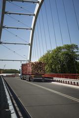 truck transporting wooden logs through the bridge