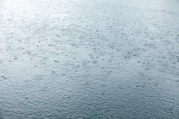 rainy weather. raindrops rippling on lake water surface with trees reflection