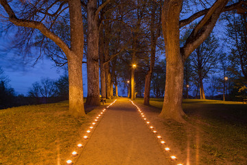 Illuminated path in the park with beautiful candles flames glow