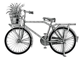 Vintage bicycle and flower pot hand drawing clip art isolated on white bakground