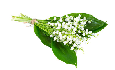 Photo sur Plexiglas Muguet de mai lilly of the valley isolated on white