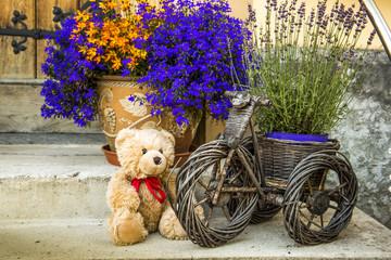 Teddy bear and fllowers in pots near door